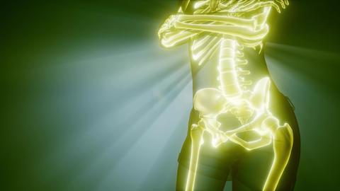 human bones radiographic scan. medical footage Footage
