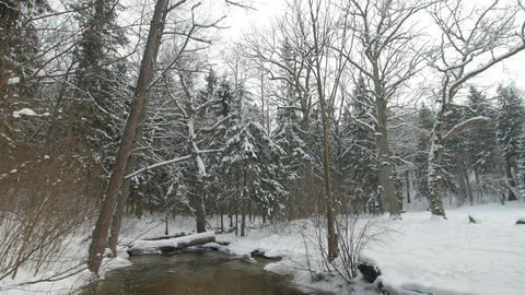 Small creek in winter snowy forest among snow banks Footage
