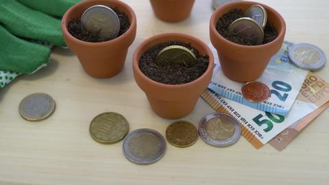 Euro Growing Money in Pots Concept Footage