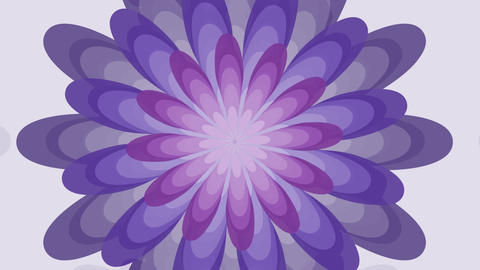 Animated fantasy flower in trendy ultra violet color,… Stock Video Footage