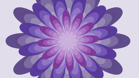 Animated fantasy flower in trendy ultra violet color, tunnel animation on white Animation