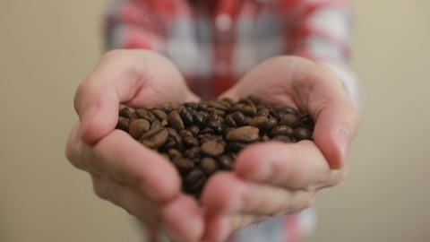 Coffee beans - man showing medium roasted coffee beans handful and scatter coffe Footage