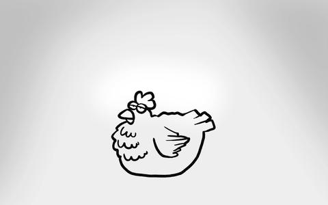 Whiteboard Chicken Drawing stock footage