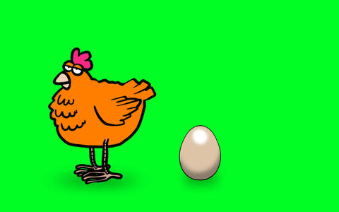 Chicken laying egg Animation