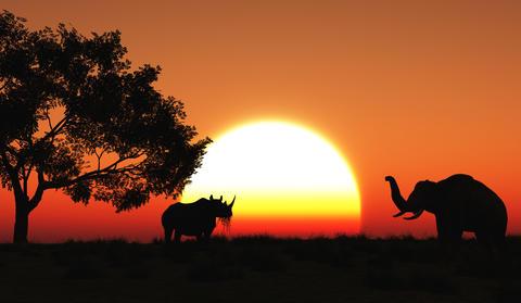 3D african landscape Fotografía