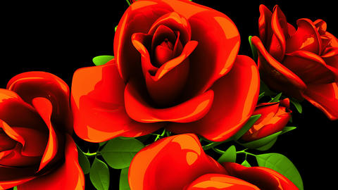 Red Roses Bouquet On Black Background Animation