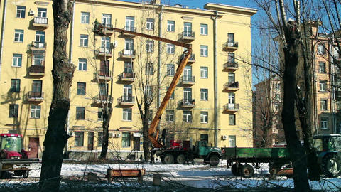 Pruning of tall trees in the city Footage