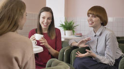 Three young girls are sitting in a cafe, laughing, smiling, friends, company Footage