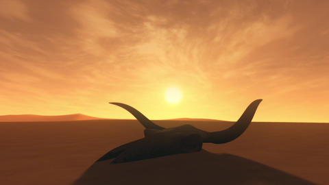 Bull Skull in Desert Global Warming Poaching Concept Hyperlapse Sunset 3D Ani Animation