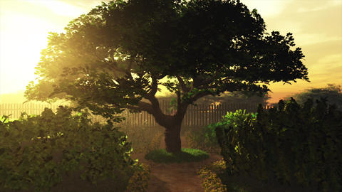 Garden of Herbs in the Sunset 3D Animation 1 Animation