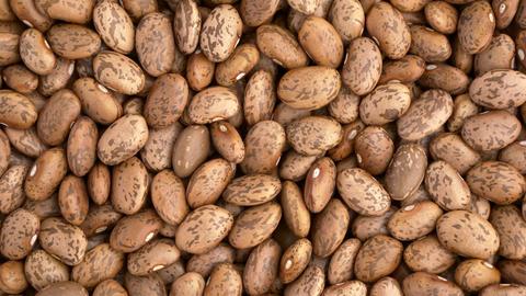 Pinto beans overhead rotation Footage