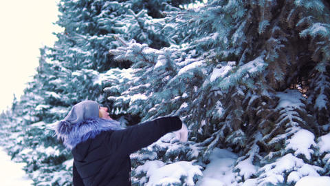 slow motion, a girl in a winter park touches snow on a tree. the snow falls from Footage
