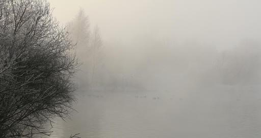 Heavy Fog on winter lake Footage