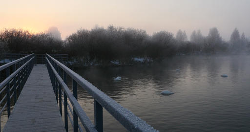Pier on the swan lake in winter dawn Footage