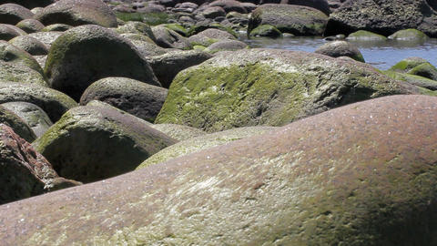 Copper color erratic boulders on the shore of the Baltic sea. Summer tide Footage