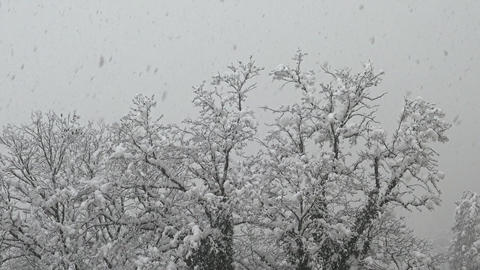 Snowfall and bad weather in the valley, the ski resort of Krasnaya Polyana Footage