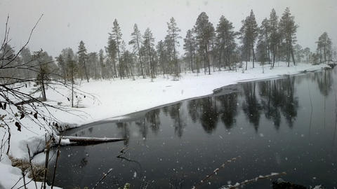 First snow 1. Dense big snow falls over forest and river Footage
