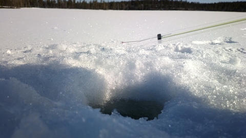 Ice Fishing. As Biting And Caught Small Perch On Forest Lake stock footage