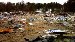 Killed forest. Rubbish dump in woods. North Russia Footage