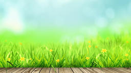 Sky And Grass 2