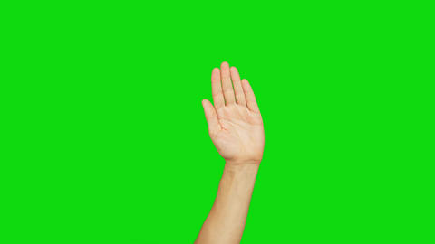White man left hand raised on a green background. Palm of hand. Raised hand Live Action