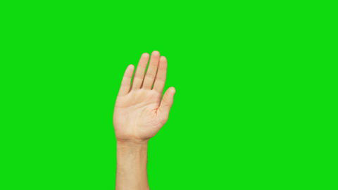 Human right palm raised up and move to right and left on green screen Alpha Footage