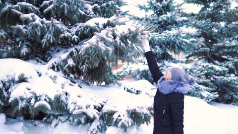 winter slow motion, snow falls slowly from a tree, a girl touches tree branches Image