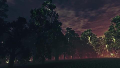 4K Dark Sinister Forest Pan Animation