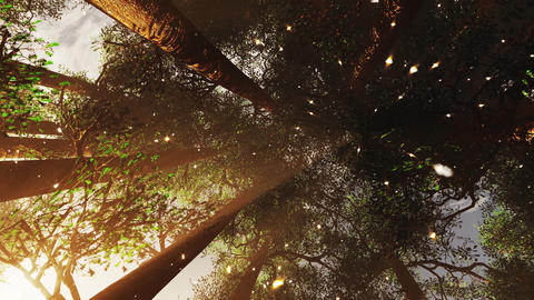 4K Mystic Fantasy Woods with Fireflies Camera Spins and Zoom Out stylized Animation