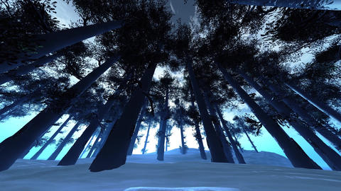 4K Winter Pine Forest Low Wide Angle Pan Animation