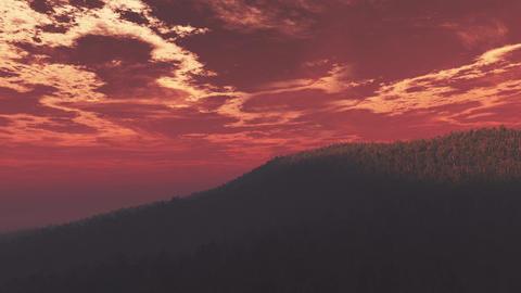 4K Wonderful Sunset Sunrise over Lush Jungle Pan 2 Animation