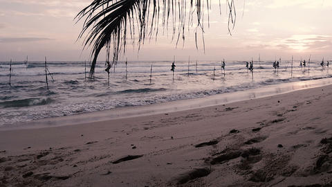 Fishermen on traditional fishing SriLanka poles near the shore in Indian ocean Footage