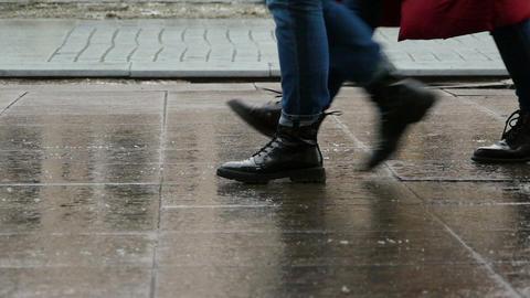 Boots of dandies Footage
