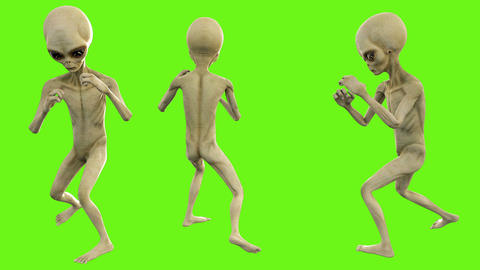 Alien fights. Loopable animation on green screen. 4k Animation