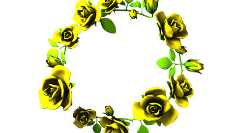 Yellow Roses Frame On White Text Space 動画素材, ムービー映像素材