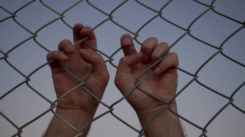 Two Male Hands Grabbing Wire Fence From Behind Live Action