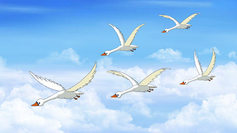 Flock of Swans Flies in the Sky Animation