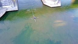 Aerial of man canoeing Footage
