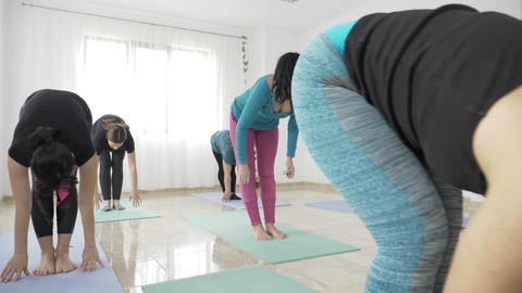 Yoga pilates class doing standing and stretching exercises using mats for floor Footage