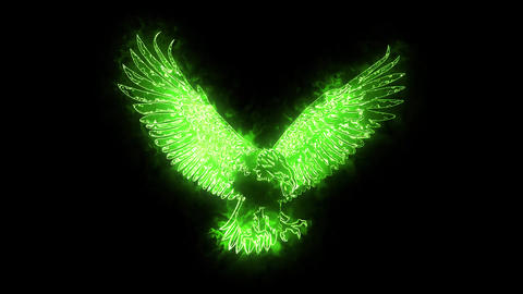 Green Burning Eagle Animated Logo Loopable Graphic Element CG動画素材