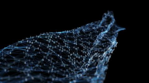 Abstract Motion - Digital Binary Polygon Plexus Data Networks Alpha Matte Animación