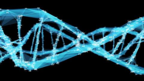 Digital Polygon Plexus DNA molecule random digits Loop... Stock Video Footage