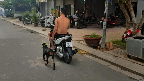 Asian Man Rides Scooter and Dog on Leash Runs near Image
