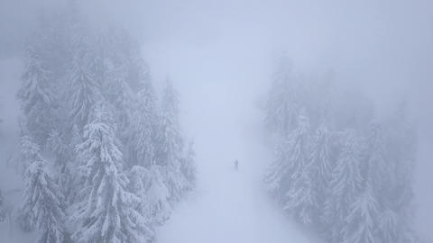 Flight over snowstorm in a snowy mountain coniferous forest and on the ski track Footage