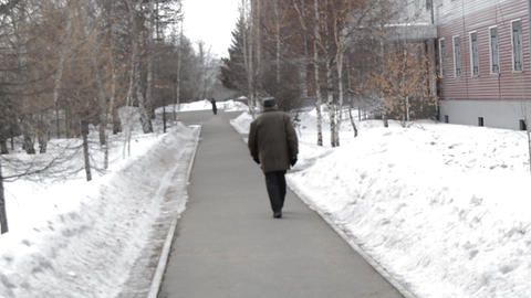 Elderly man walking on the road through the spring Park, back view Footage