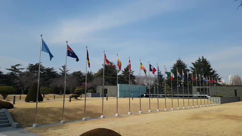 Flags Waving in the air of UN cemetary in Busan South Korea ビデオ