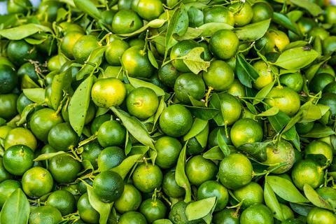 Bunch of fresh green limes Photo