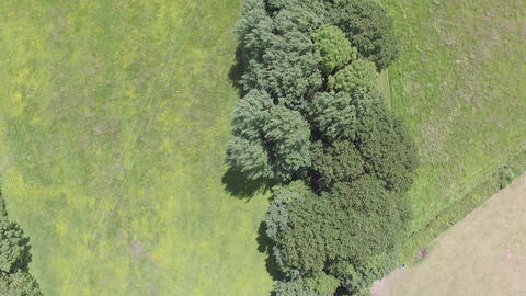 Flying Over Tree Covered Path and Field on a Windy Day in Flintshire Footage