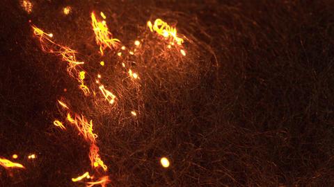 Macro Sheel Wool Burning Live Action