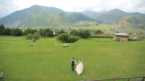 bride and groom are walking along green grass, top view 영상물